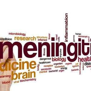 Could Meningitis Be Eradicated in the Near Future?